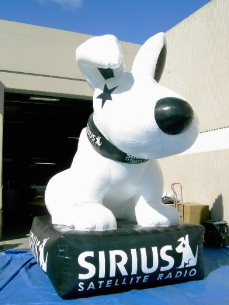 Custom Brand Dog for Special Events!